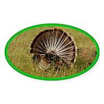 Turkey Fan Oval Sticker (50 pk)