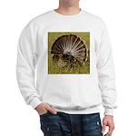 Turkey Fan Sweatshirt