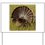 Turkey Fan Yard Sign