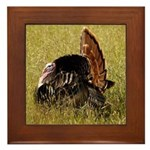 Big Tom Turkey Framed Tile