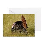 Big Tom Turkey Greeting Card