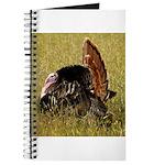 Big Tom Turkey Journal