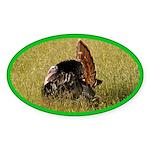 Big Tom Turkey Oval Sticker (10 pk)
