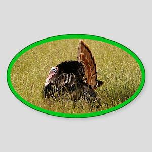 Big Tom Turkey Oval Sticker