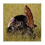 Big Tom Turkey Tile Coaster