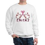 Meet The Twins II Sweatshirt