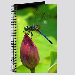 Dragonfly Side-View Journal