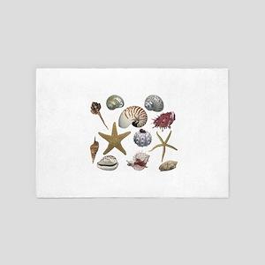 shells 4' x 6' Rug