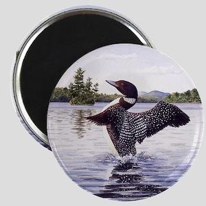 Loon Display Magnets
