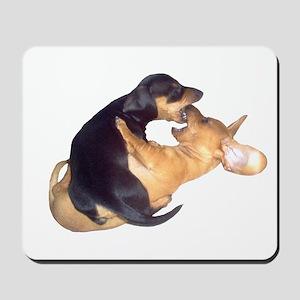 Yin Yang Color Dachshunds Mousepad