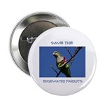 Save the Edgewater Parrots Button