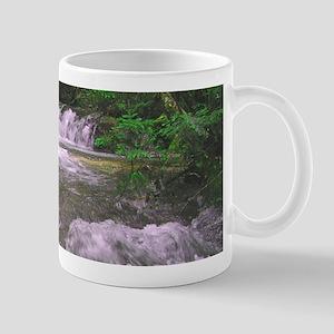 Waterfall Mug - Beautiful Mattole River