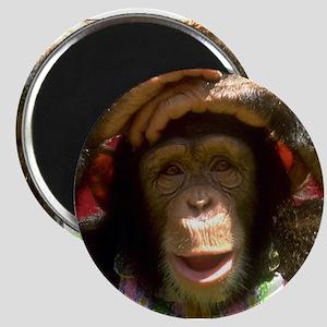 """Monkey 2.25"""" Magnet (10 pack)"""