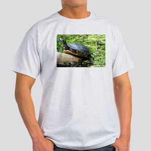 Redbelly Turtle Light T-Shirt