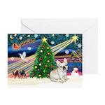 XmasStar/French BD (#1) Greeting Cards (Pk of 20)