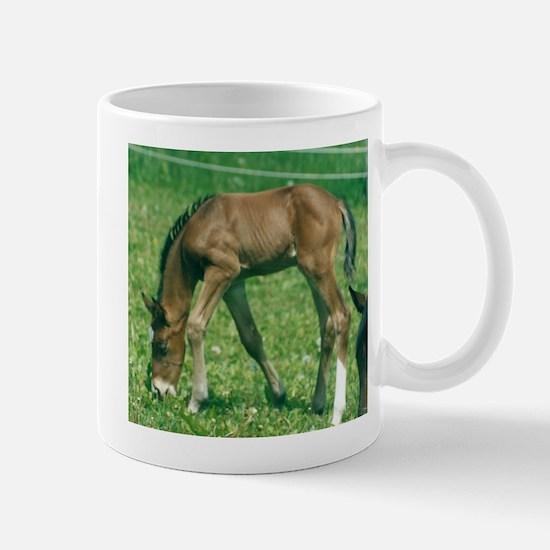 Nova and the New Grass Mug