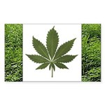 Legalize Marijuana Cannabis Flag Sticker (10pk)