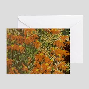 Orange Blossom Greeting Cards (Pk of 10)