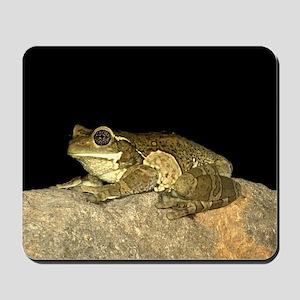 Milkfrog Mousepad