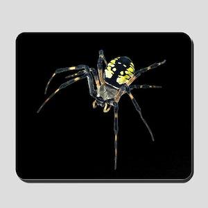 Argiope Garden Spider Mousepad