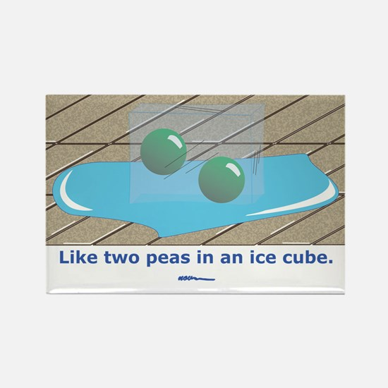 in an Ice Cube Rectangle Magnet