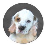 Clumber Spaniel Round Car Magnet