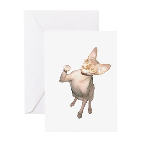 Hairless Cat Greeting Card