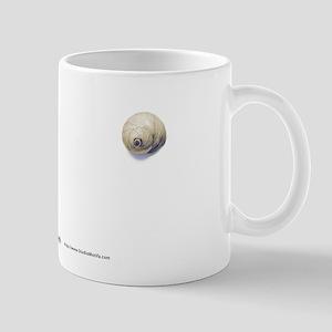 Small Nautilus Mug