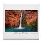 Mooney Falls and Pool Tile Coaster
