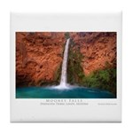 Mooney Falls and Pool Tile Coaster