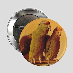 Parrot Pair Button