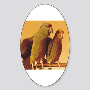 Parrot Pair Oval Sticker