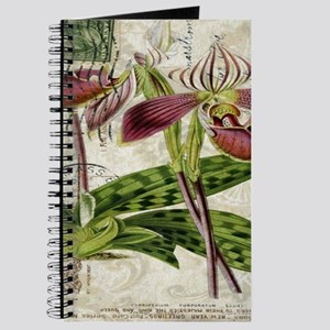 vintage orchid french botanical Journal