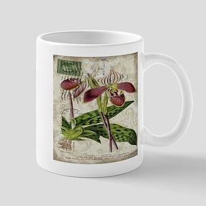 vintage orchid french botanical Mugs