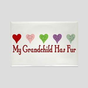 Furry Grandchild Rectangle Magnet