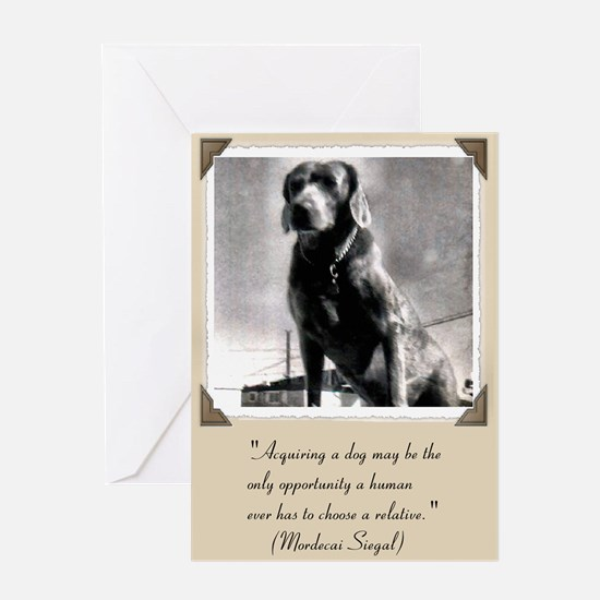 Old Hound Dog Greeting Card