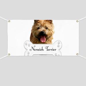 Norwich 1 Banner