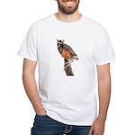 Young robin White T-Shirt
