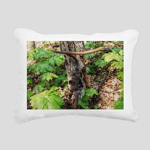 Forgotten Rectangular Canvas Pillow