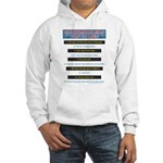 Top Ten Lies Snowmobilers use Hooded Sweatshirt