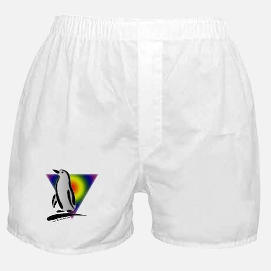 Abstract Gay Pride Penguin Boxer Shorts