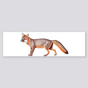 Gray Fox Animal Lover Bumper Sticker