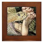 Sexy Snake Vore Framed Tile