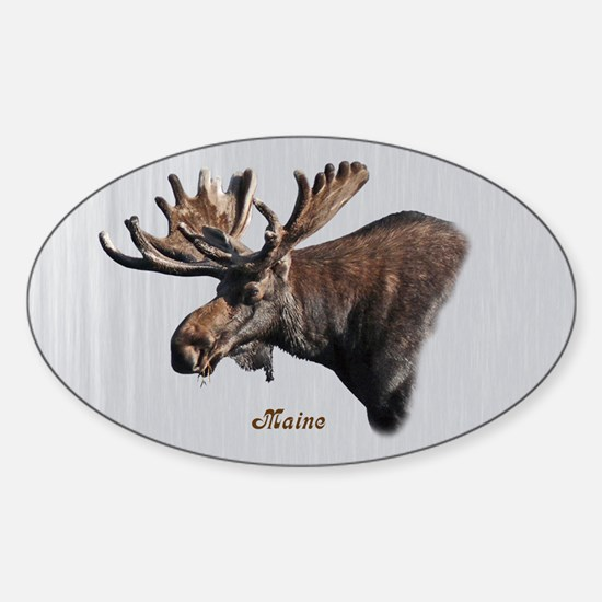 Big Moose Sticker (Oval)