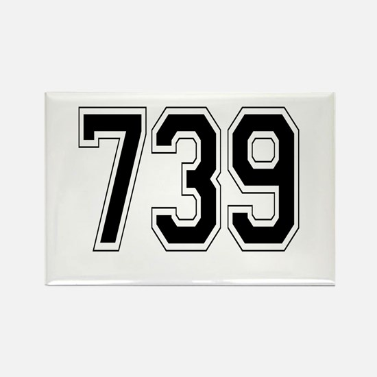 739 Rectangle Magnet