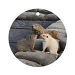 Groundhog Family II Ornament (Round)