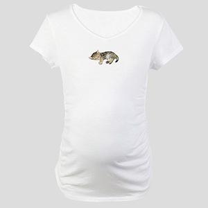 Cat Nap Maternity T-Shirt