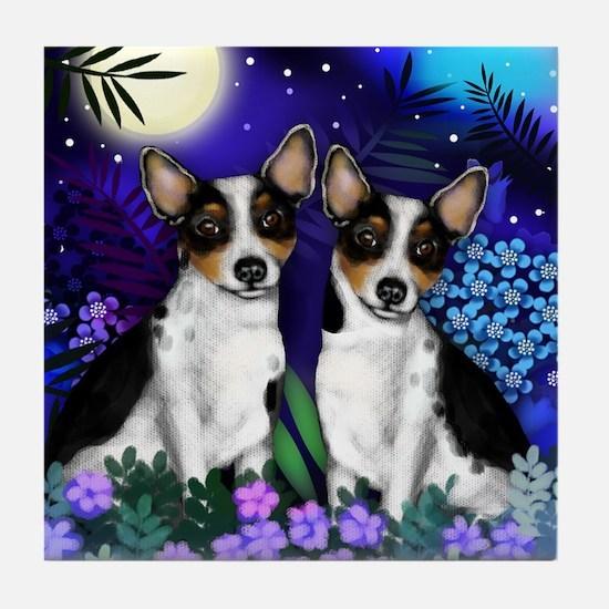 RAT TERRIER DOGS MOON GARDEN Tile Coaster