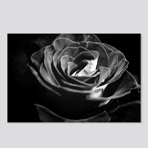 Dark Black and White Rose Postcards (Package of 8)