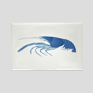 BLUE Magnets